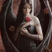 Anne_Stokes-Anne-Stokes-Angel-<br />Rose